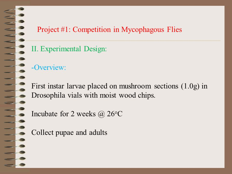 Project #1: Competition in Mycophagous Flies II.