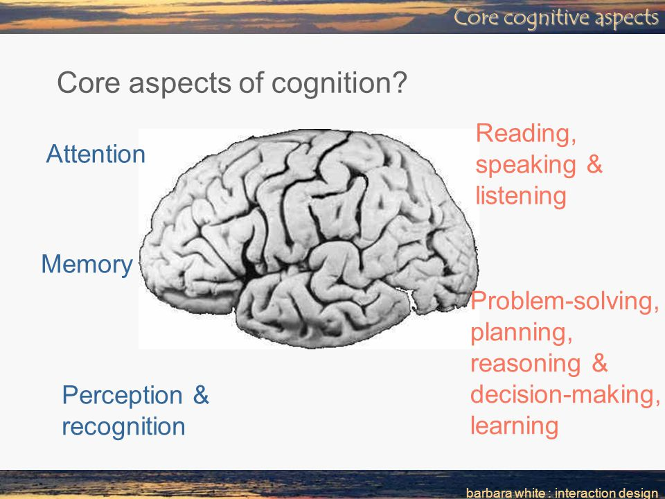 barbara white : interaction design Core cognitive aspects Core aspects of cognition.