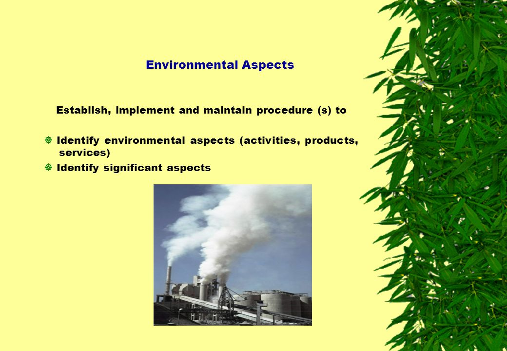 Environmental Aspects Establish, implement and maintain procedure (s) to  Identify environmental aspects (activities, products, services)  Identify