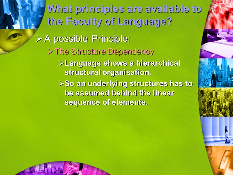 What principles are available to the Faculty of Language?  A possible Principle:  The Structure Dependency  Language shows a hierarchical structura