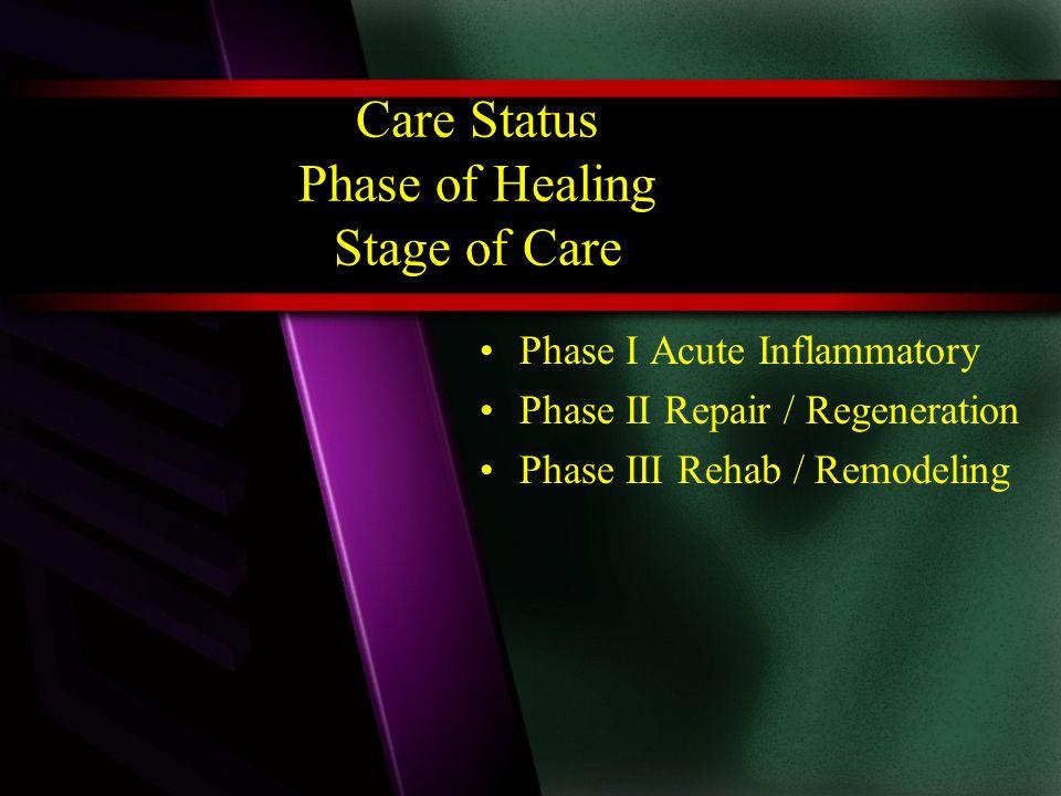 Phase IPhase IIPhase III AcuteRegenerationRemodeling InflammationRepairRehab Mild 2 days Moderate 3-4 days Moderate to severe 7 days Mild to moderate 6 weeks Moderately severe up to 16 wks.