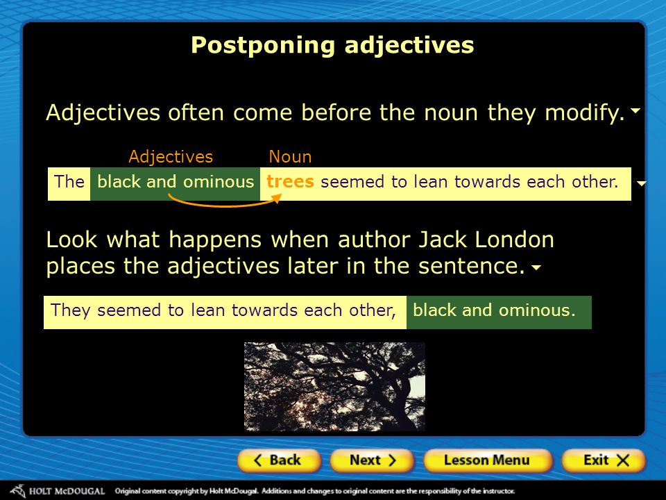 Postponing adjectives Adjectives often come before the noun they modify.