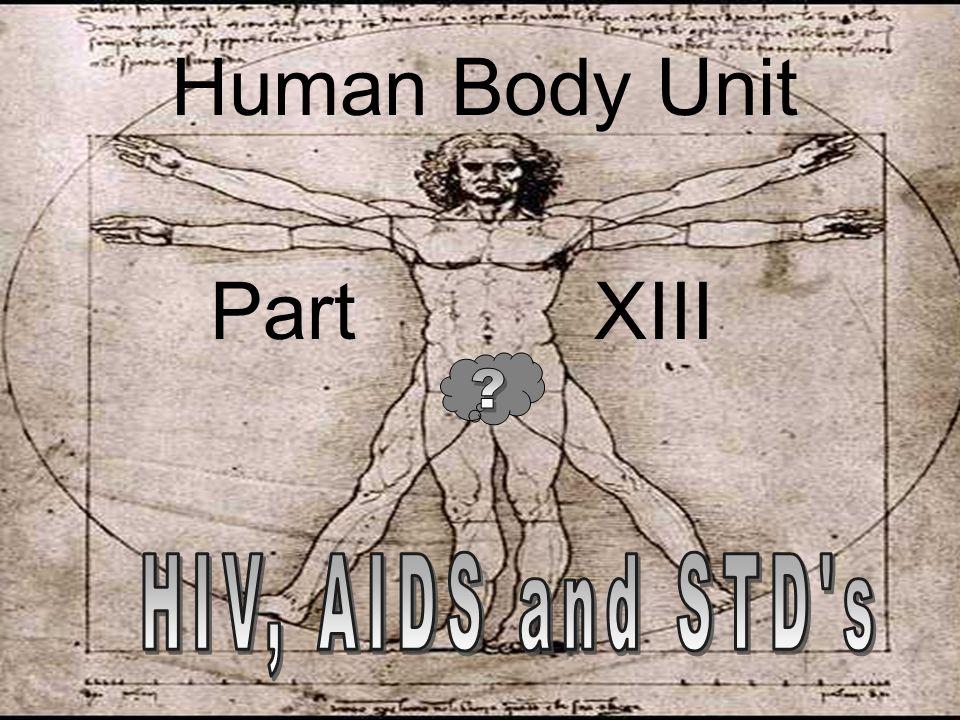 Human Body Unit Part XIII