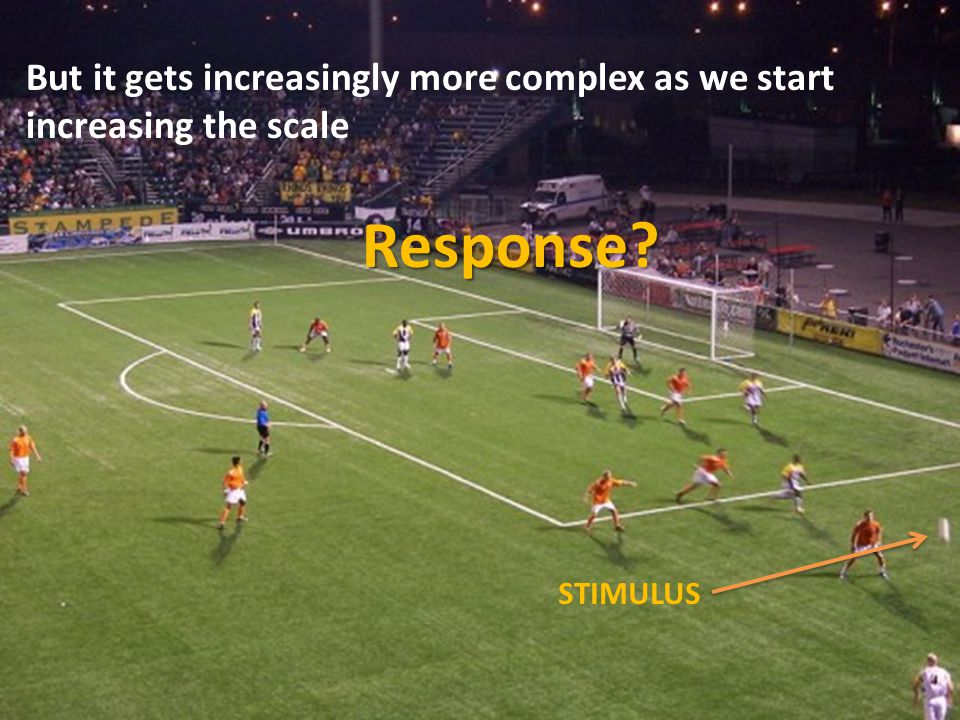 But it gets increasingly more complex as we start increasing the scale STIMULUS Response?