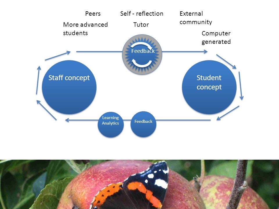 Staff conceptStudent concept Feedback Tutor Self - reflectionPeers More advanced students External community Computer generated Learning Analytics