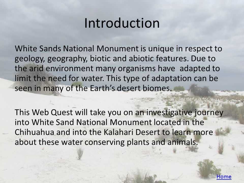 Introduction White Sands National Monument is unique in respect to geology, geography, biotic and abiotic features.