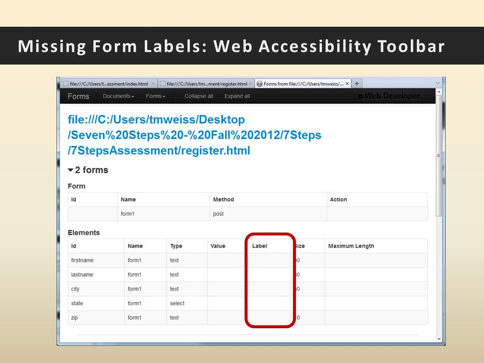 Missing Form Labels: Web Accessibility Toolbar