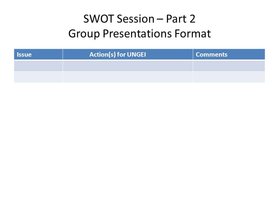 SWOT Session – Part 2 Group Presentations Format Issue Action(s) for UNGEIComments