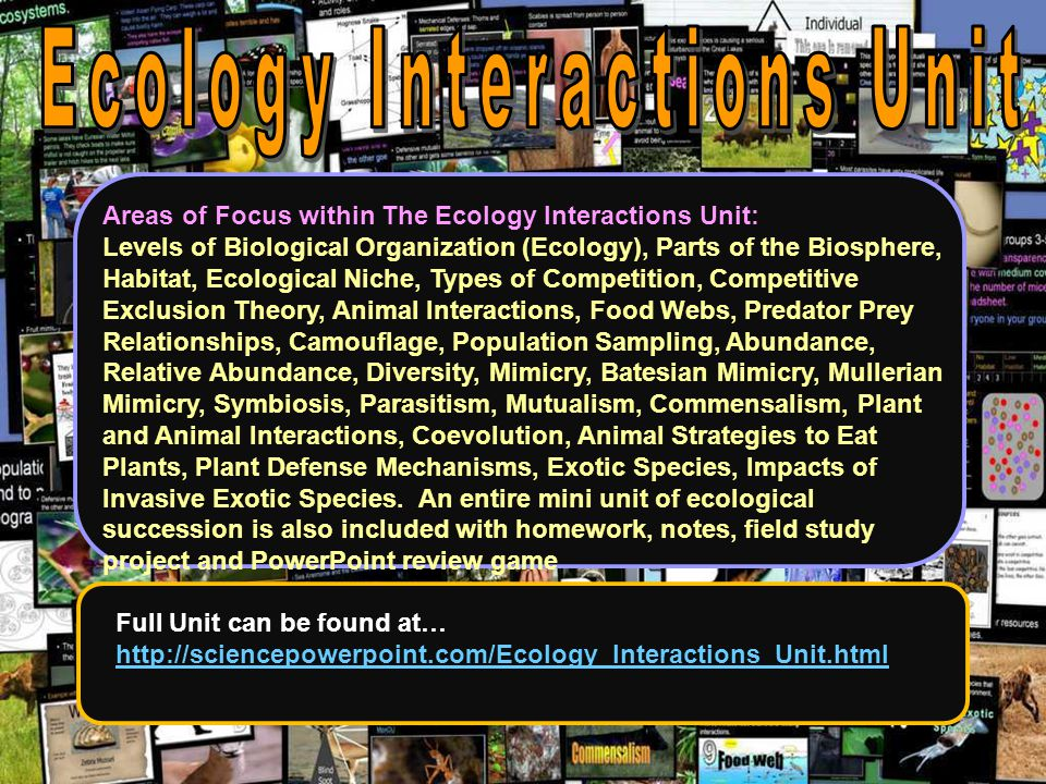 Areas of Focus within The Ecology Interactions Unit: Levels of Biological Organization (Ecology), Parts of the Biosphere, Habitat, Ecological Niche, T
