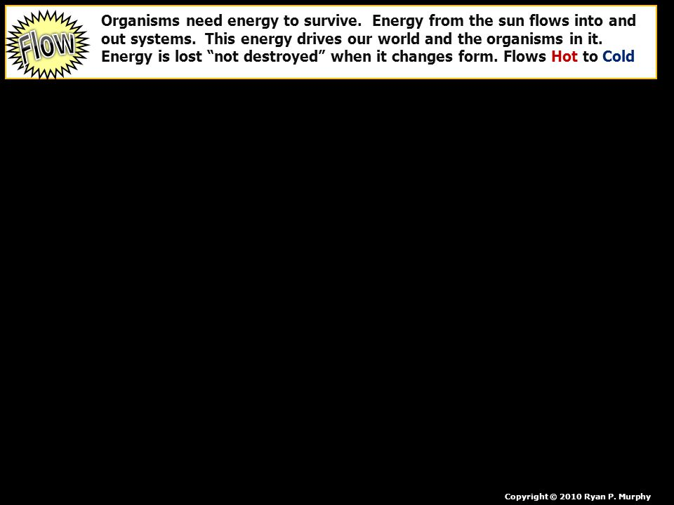 Organisms need energy to survive. Energy from the sun flows into and out systems. This energy drives our world and the organisms in it. Energy is lost