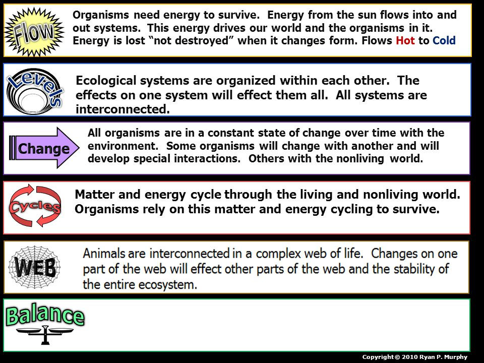 Copyright © 2010 Ryan P. Murphy Organisms need energy to survive. Energy from the sun flows into and out systems. This energy drives our world and the