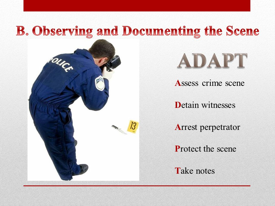 Assess crime scene Detain witnesses Arrest perpetrator Protect the scene Take notes