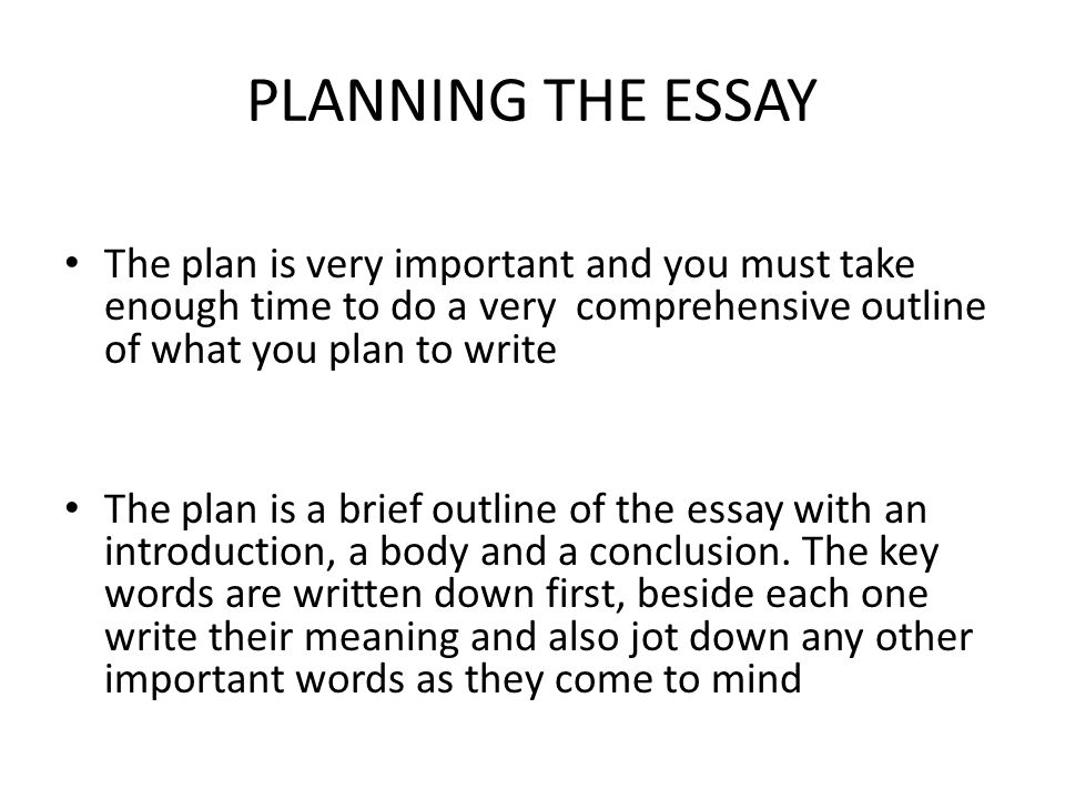 The plan The definition of one key word may be important to begin the essay.
