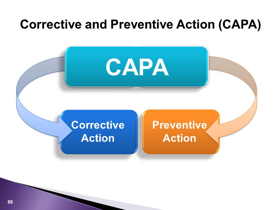 55 Corrective Action Preventive Action CA PA CAPA Corrective and Preventive Action (CAPA)