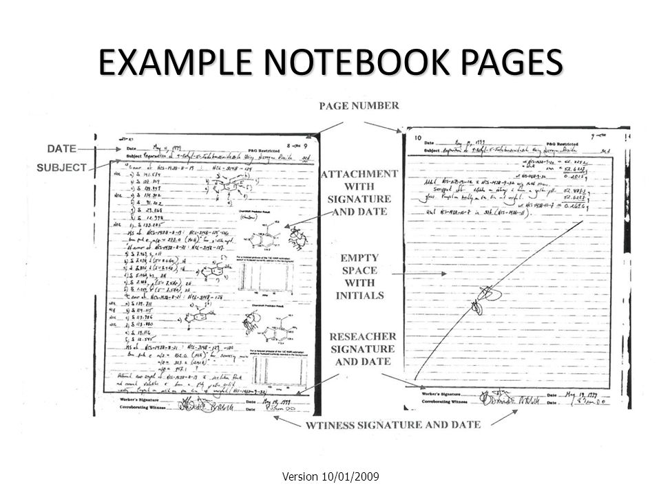 EXAMPLE NOTEBOOK PAGES Version 10/01/2009