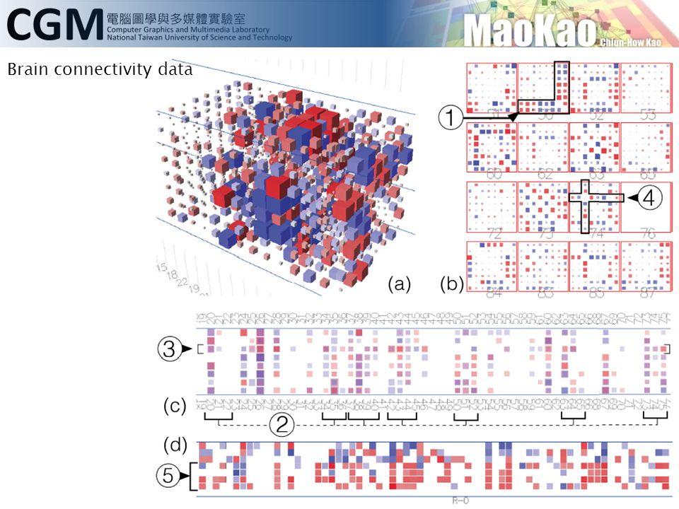 Brain connectivity data