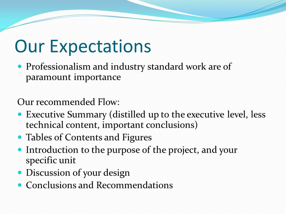 Our Expectations Professionalism and industry standard work are of paramount importance Our recommended Flow: Executive Summary (distilled up to the e