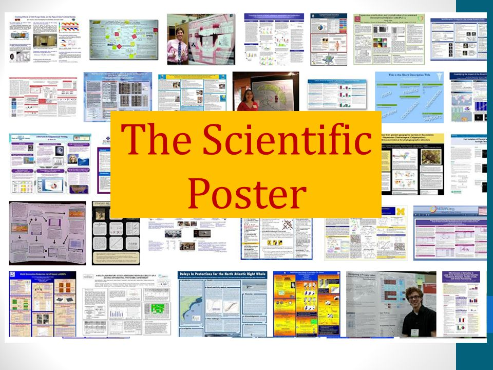 Today: The Poster RUBRIC! What to include How it should look How to make (Fast) How to present