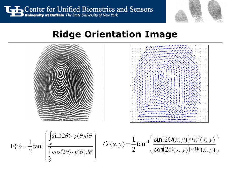 Ridge Orientation Image