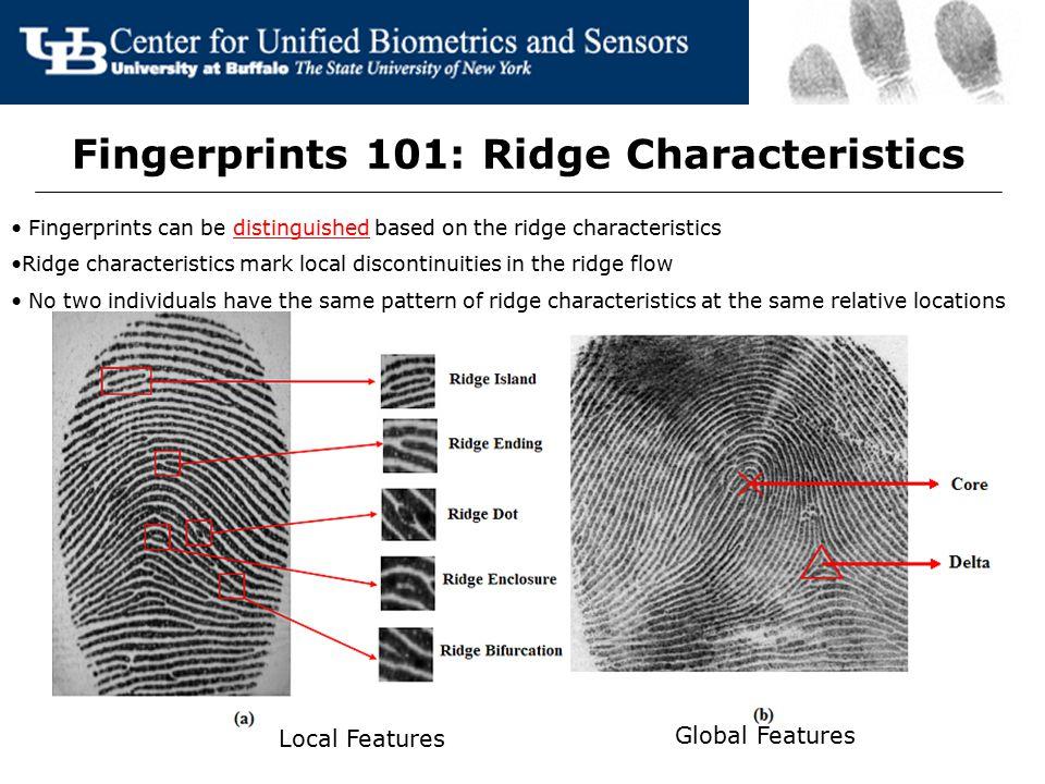 Fingerprints 101: Ridge Characteristics Fingerprints can be distinguished based on the ridge characteristics Ridge characteristics mark local disconti