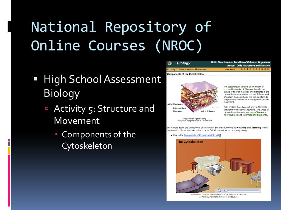 National Repository of Online Courses (NROC)  High School Assessment Biology  Activity 5: Structure and Movement  Components of the Cytoskeleton