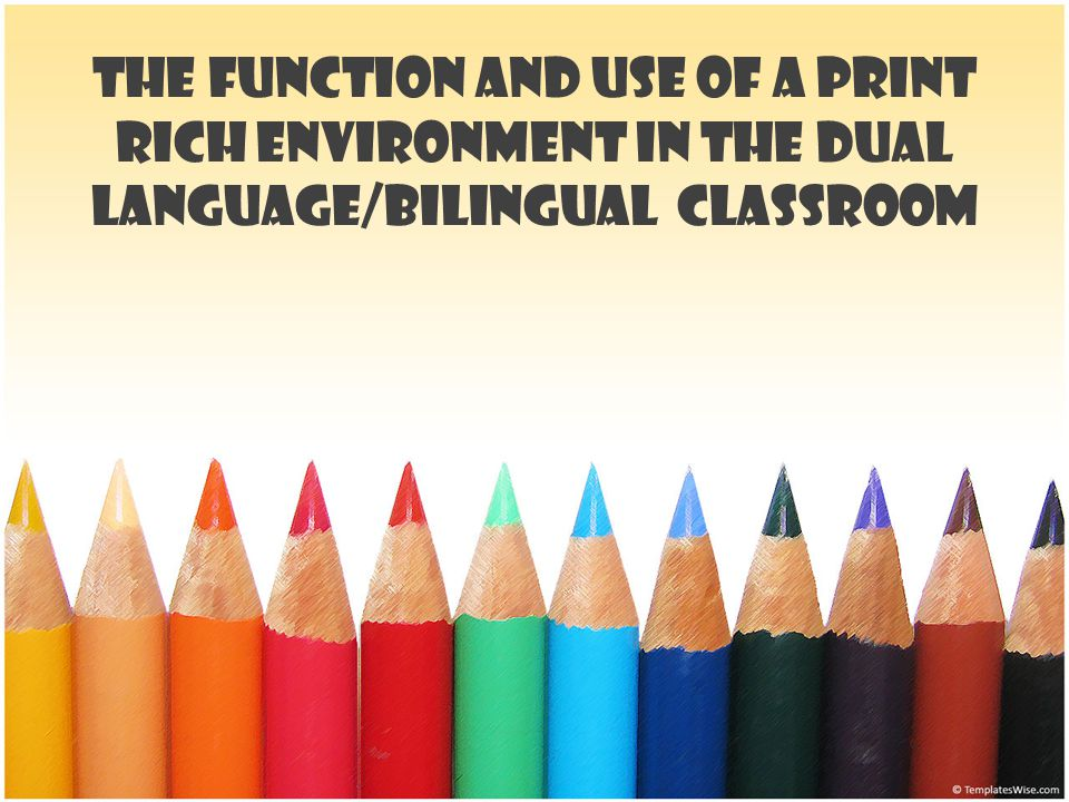 The Function and Use of a Print Rich Environment in the Dual Language/Bilingual Classroom