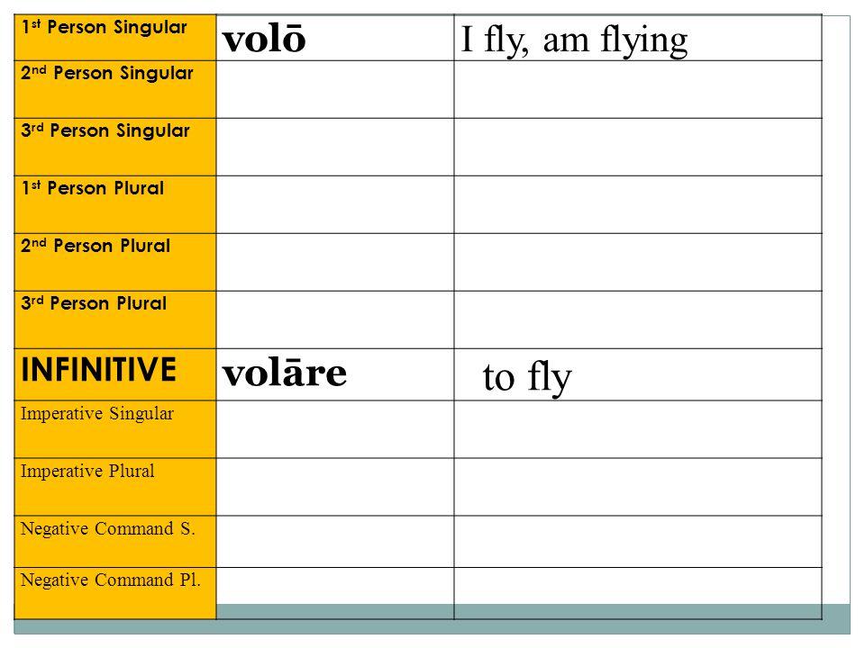 1 st Person Singular volō I fly, am flying 2 nd Person Singular 3 rd Person Singular 1 st Person Plural 2 nd Person Plural 3 rd Person Plural INFINITI