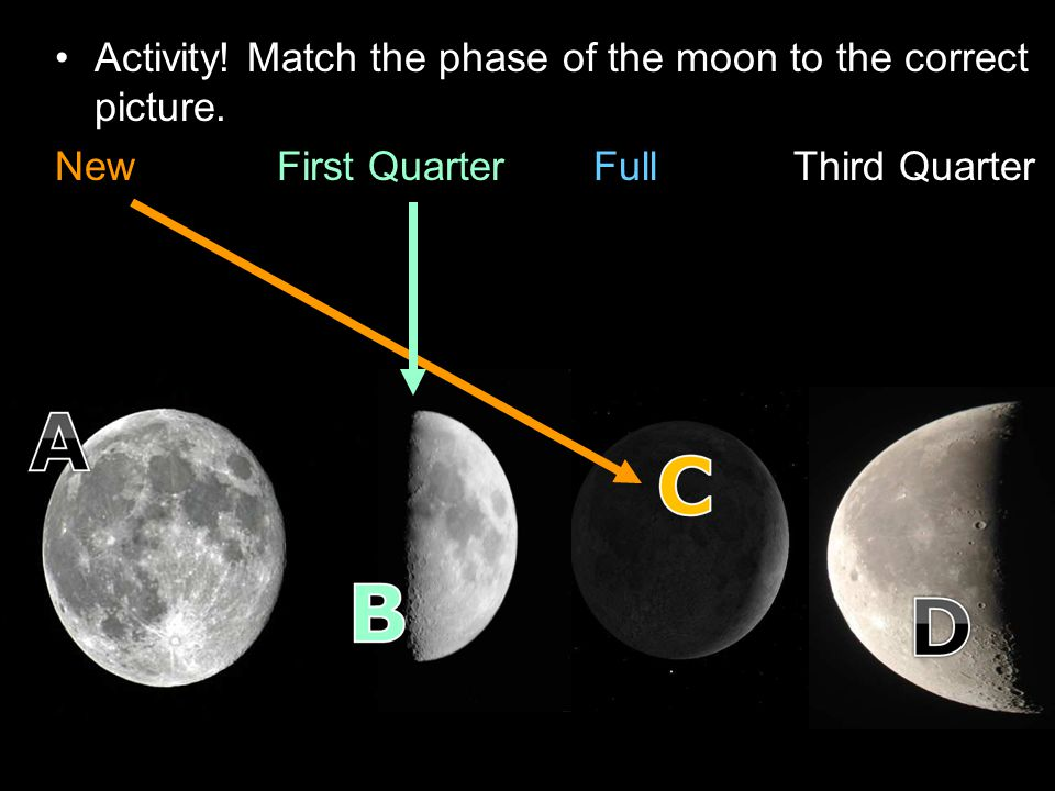 Activity! Match the phase of the moon to the correct picture. New First Quarter Full Third Quarter