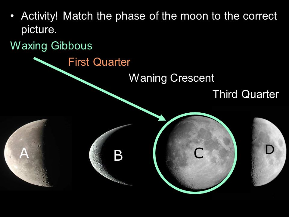 Activity! Match the phase of the moon to the correct picture. Waxing Gibbous First Quarter Waning Crescent Third Quarter A B C D