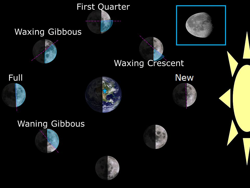 Waxing Crescent First Quarter Waxing Gibbous Full Waning Gibbous