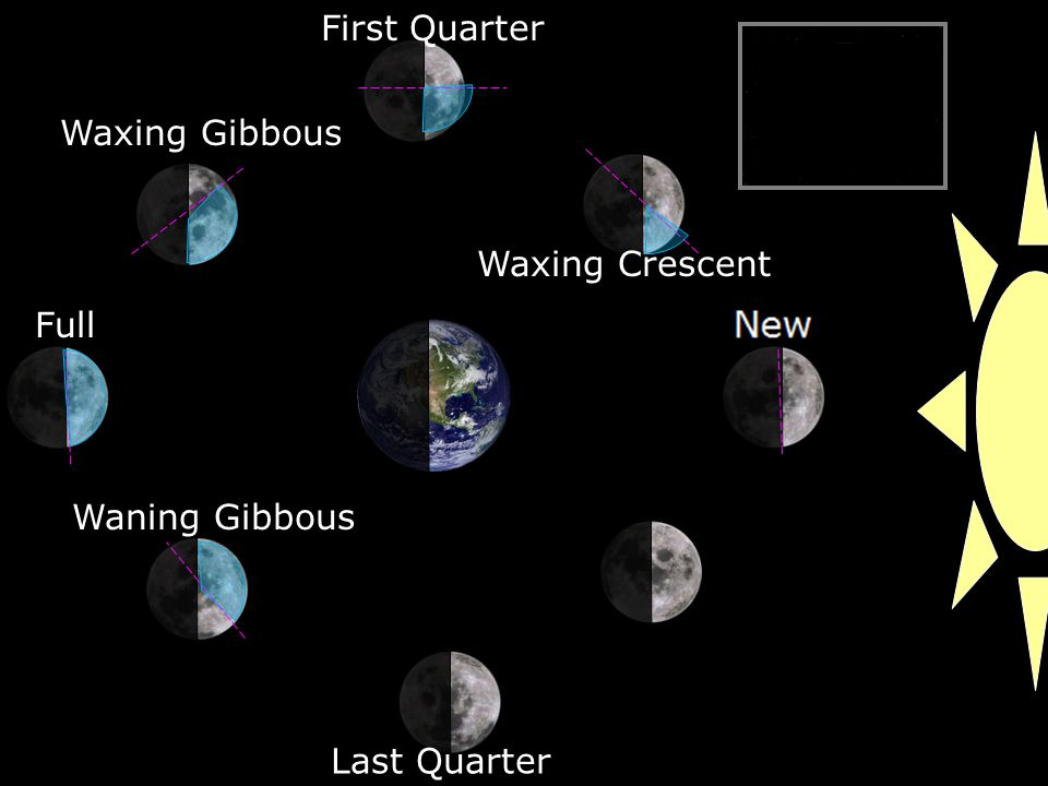 Waxing Crescent First Quarter Waxing Gibbous Full Waning Gibbous Last Quarter