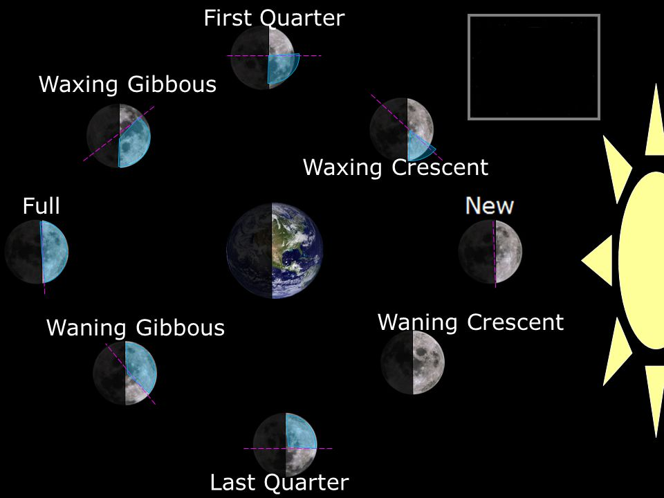 Waxing Crescent First Quarter Waxing Gibbous Full Waning Gibbous Last Quarter Waning Crescent