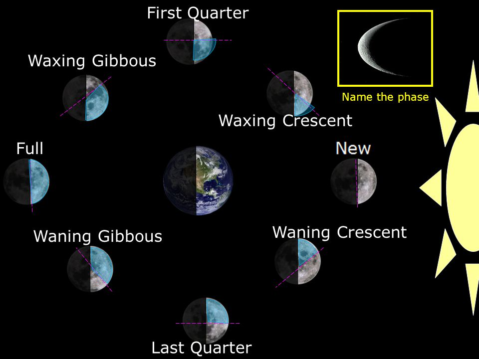 Waxing Crescent First Quarter Waxing Gibbous Full Waning Gibbous Last Quarter Waning Crescent Name the phase