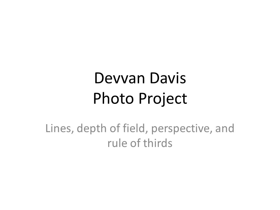 Devvan Davis Photo Project Lines, depth of field, perspective, and rule of thirds