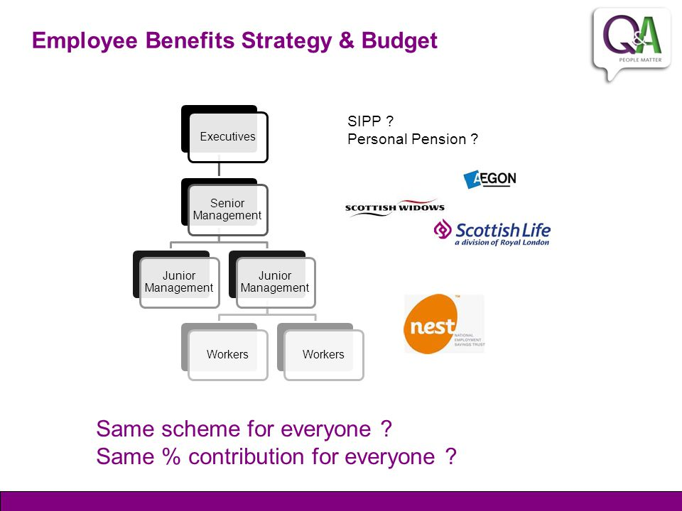 Employee Benefits Strategy & Budget Same scheme for everyone .