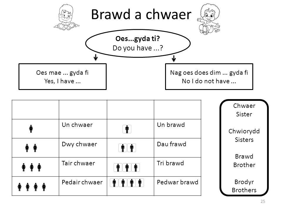 Brawd a chwaer 25 Oes...gyda ti? Do you have...? Oes mae... gyda fi Yes, I have... Nag oes does dim... gyda fi No I do not have... Un chwaerUn brawd D