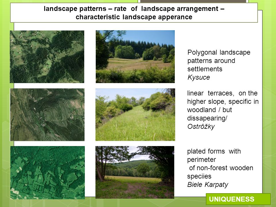 plated forms with perimeter of non-forest wooden speciies Biele Karpaty linear terraces, on the higher slope, specific in woodland / but dissapearing/ Ostrôžky Polygonal landscape patterns around settlements Kysuce UNIQUENESS landscape patterns – rate of landscape arrangement – characteristic landscape apperance