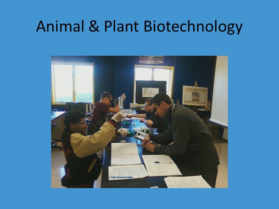 Animal & Plant Biotechnology