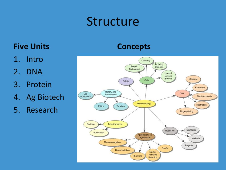Structure Five Units 1.Intro 2.DNA 3.Protein 4.Ag Biotech 5.Research Concepts