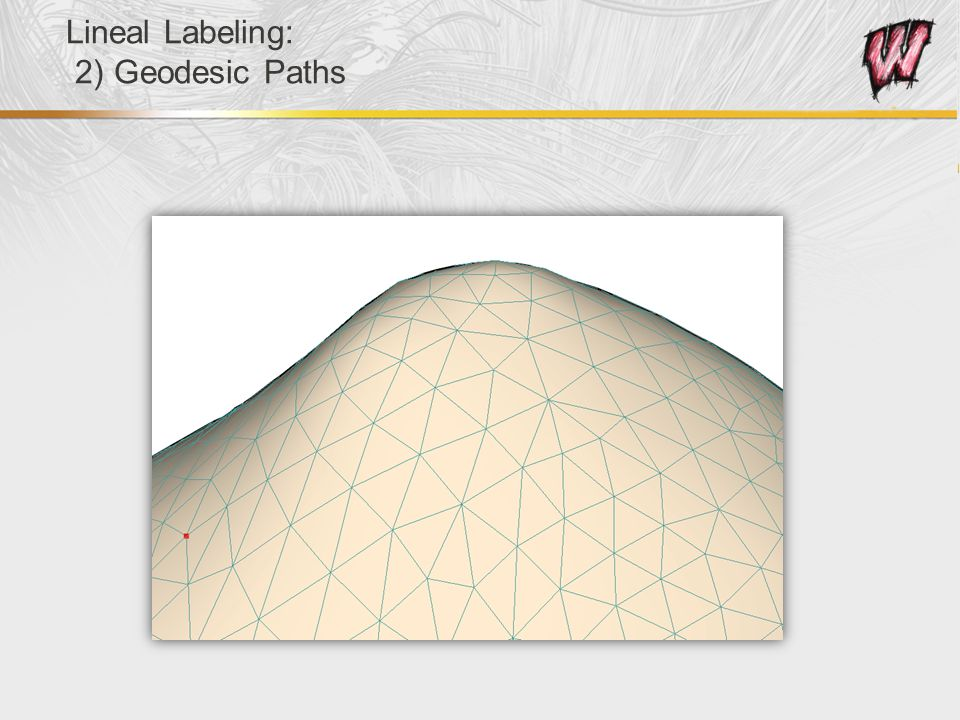 Lineal Labeling: 2) Geodesic Paths