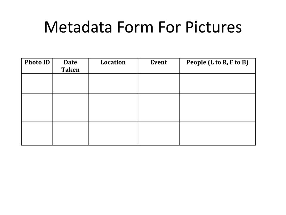 Metadata Form For Pictures