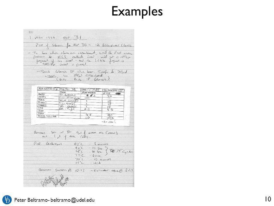 Peter Beltramo- beltramo@udel.edu Examples 10