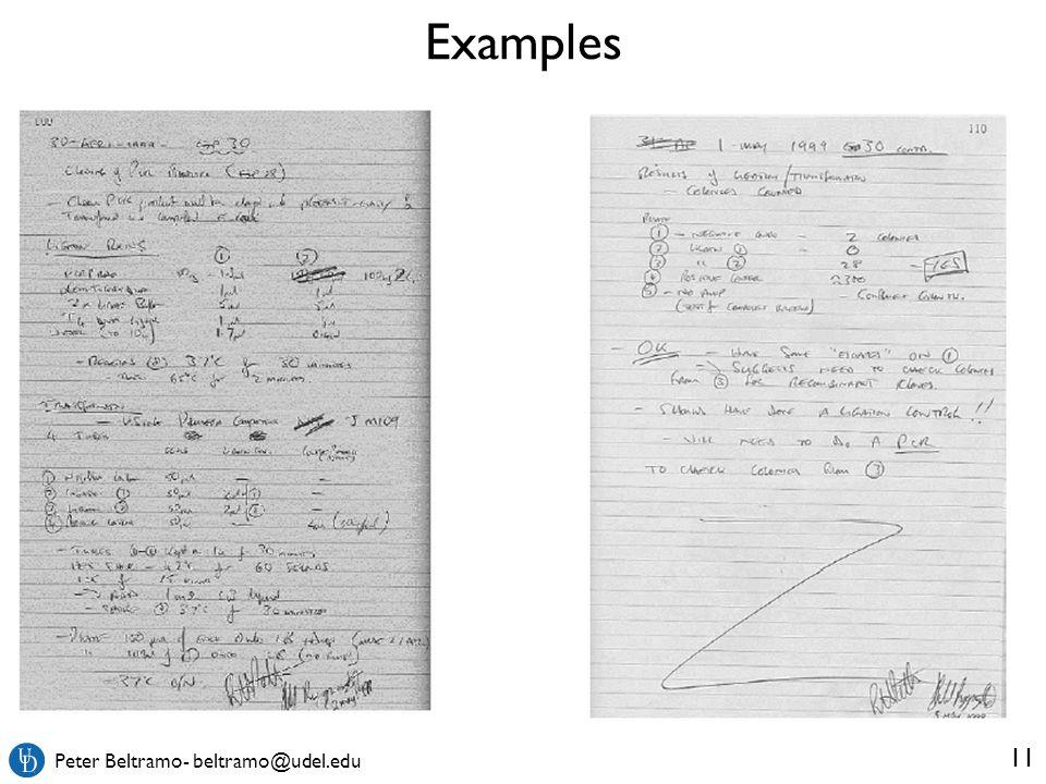 Peter Beltramo- beltramo@udel.edu Examples 11