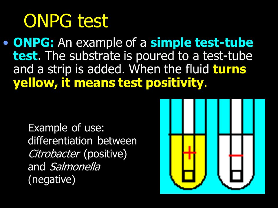 ONPG test ONPG: An example of a simple test-tube test. The substrate is poured to a test-tube and a strip is added. When the fluid turns yellow, it me