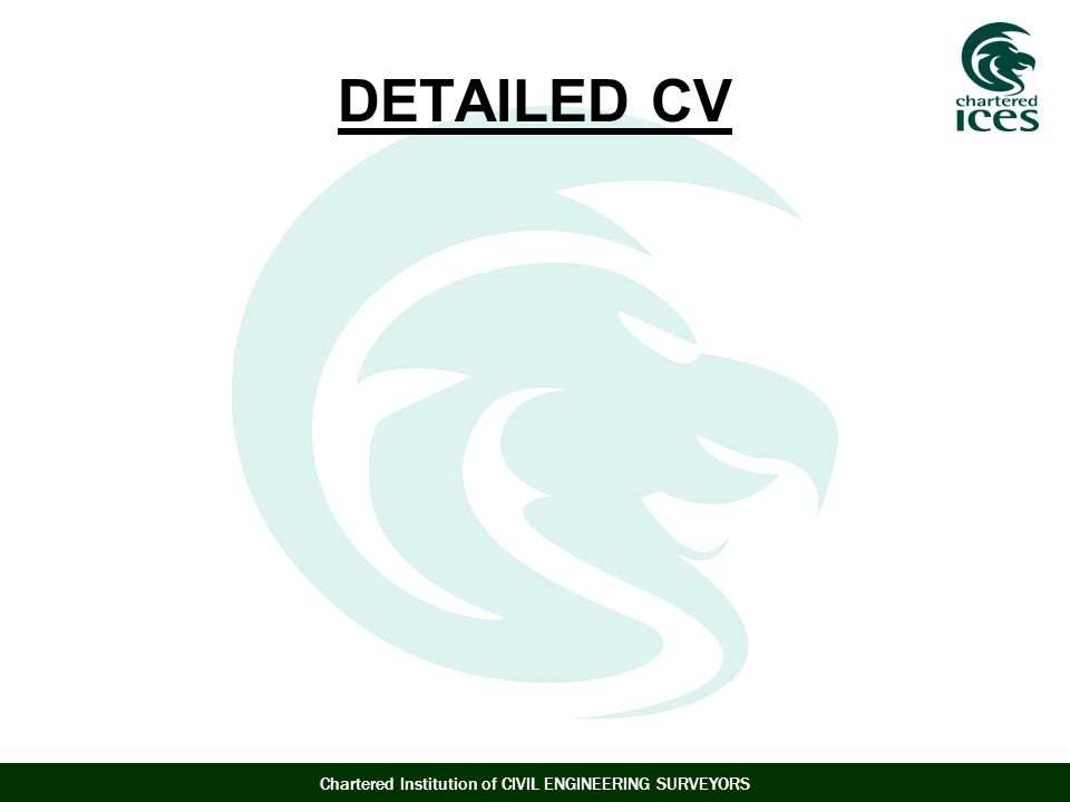 Chartered Institution of CIVIL ENGINEERING SURVEYORS DETAILED CV