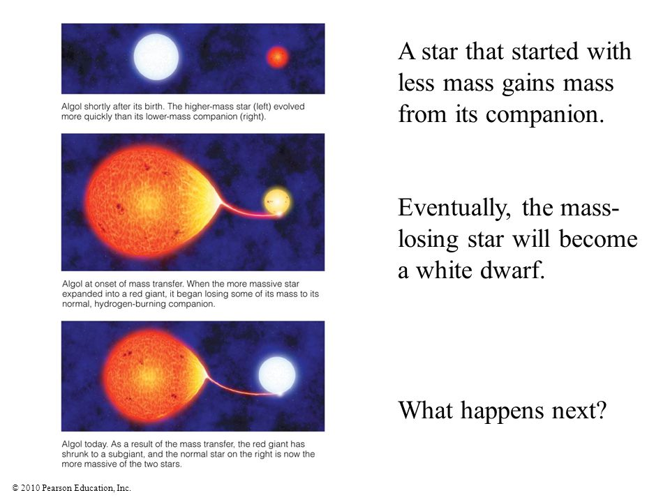 © 2010 Pearson Education, Inc. A star that started with less mass gains mass from its companion. Eventually, the mass- losing star will become a white