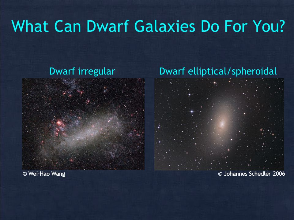 What Can Dwarf Galaxies Do For You.