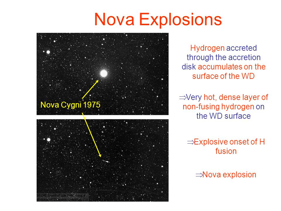 Nova Explosions Nova Cygni 1975 Hydrogen accreted through the accretion disk accumulates on the surface of the WD  Very hot, dense layer of non-fusing hydrogen on the WD surface  Explosive onset of H fusion  Nova explosion
