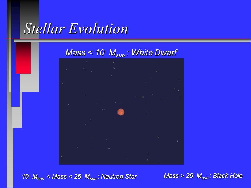 Stellar Evolution Mass < 10 M sun : White Dwarf 10 M sun < Mass < 25 M sun : Neutron Star 10 M sun < Mass < 25 M sun : Neutron Star Mass > 25 M sun : Black Hole