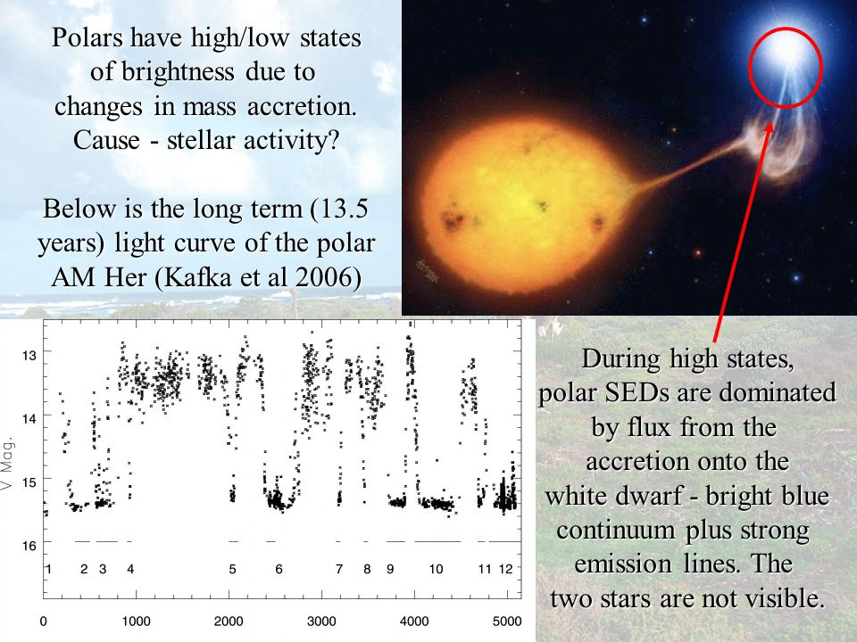 Polars have high/low states of brightness due to changes in mass accretion.